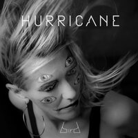 Hurricane — Bird