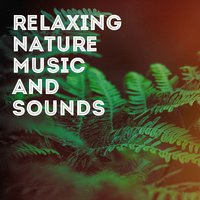 Relaxing Nature Music and Sounds — Nature Sounds Nature Music, Rest & Relax Nature Sounds Artists, Rain, Sounds Of Nature : Thunderstorm, Nature Sounds Nature Music, Rest & Relax Nature Sounds Artists, Sounds Of Nature : Thunderstorm, Rain