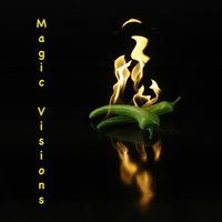Magic Visions — The Stephan Diez Group