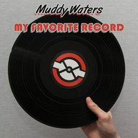 My Favorite Record — Muddy Waters