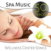 Spa Music - 50 Tracks Wellness Center Songs, Healing Nature Sounds, Total Relaxation, Reiki and Massage Music — сборник