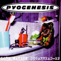 Love Nation Sugarhead — Pyogenesis