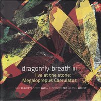 Live at the Stone: Megaloprepus Caerulatus — Steve Swell, Weasel Walter, Paul Flaherty, C. Spencer Yeh, Dragonfly Breath III