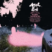 Dedicated to Bobby Jameson — Ariel Pink