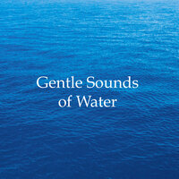 Gentle Sounds of Water - 20 Most Soothing Rain and Water Sounds & Melodies for Relaxation, Deep Sleep, Stress-Free Anxiety Relief, Better Mental Health and Lifestyle Success — Sleep Music Club, Serenity Music Collection, Serenity Music Collection, Sleep Music Club
