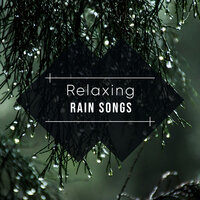 #18 Relaxing Rain Songs — Thunderstorms & Rain Sounds, Relaxing Nature Sounds Collection, Sleep Sounds Rain