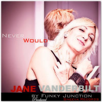 Never Would — Funky Junction