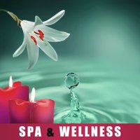 Spa & Wellness – Calm Relaxation, Beautiful Spa Moments, Sensual Massage, Massage Therapy, Nature Sounds — Day Spa Academy