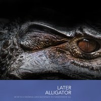 Later Alligator — сборник