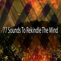 77 Sounds to Rekindle the Mind — Outside Broadcast Recordings