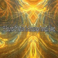 55 Sounds Of Nature To Encourage Tranquil Sleep — Ocean Waves For Sleep