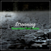 #21 Streaming November Rain Tracks — Rain Forest FX, Pacific Rim Nature Sounds, Nature Chillout, Pacific Rim Nature Sounds, Nature Chillout, Rain Forest FX