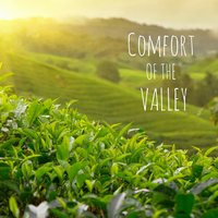 Comfort of the Valley — Meditation Music Zone