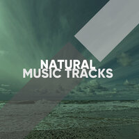 Natural Music Tracks for a Yoga Workout — Yoga Namaste