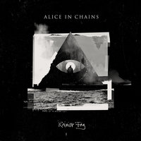 Rainier Fog — Alice In Chains