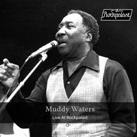 Live at Rockpalast — Muddy Waters