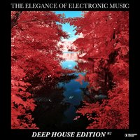 The Elegance of Electronic Music - Deep House Edition #2 — сборник