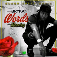Words with Meaning - Single — Bryka