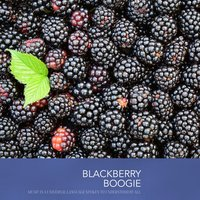 Blackberry Boogie — The Platters