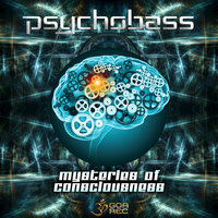 Mysteries of Consciousness — Psychobass