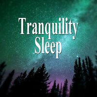 Tranquility Sleep - Relaxing Songs, Healing Music, Soothing Music, Music for Sleep, Nature Sounds, Stress Relief, Relax — Better Sleep Oasis