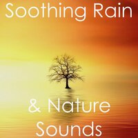 15 Deep Soothing Rain & Nature Sounds — Spa, Sounds Of Nature : Thunderstorm, Rain, White Noise Meditation, Spa, Sounds Of Nature : Thunderstorm, Rain, White Noise Meditation