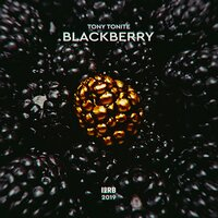 Blackberry — Tony Tonite