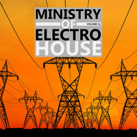 ministry of electro house Vol.11 — сборник