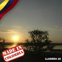 Made In Colombia / Llanera / 16 — сборник
