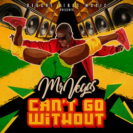 Can't Go Without — Mr. Vegas