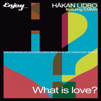 What Is Love, Vol. 2 - EP — Hakan Lidbo