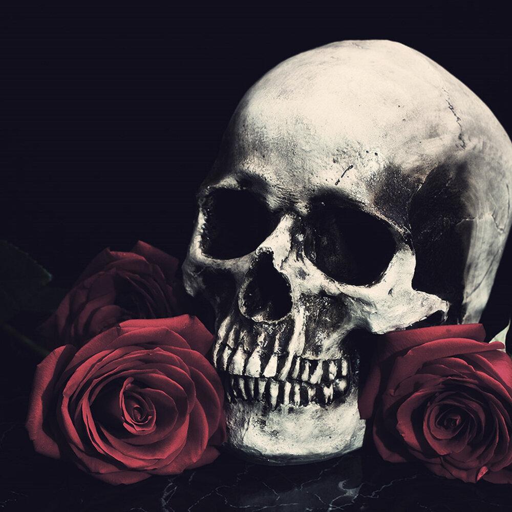 чем черепа картинки с розами конкретное место задачи