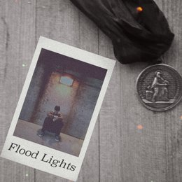 Flood Lights — Danny Mitchell