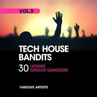 Tech House Bandits, Vol. 3 (30 Ultimate Groove Gangsters) — сборник