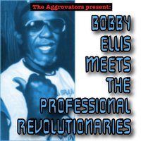 The Aggrovators Present: Bobby Ellis Meets the Professional Revolutionaries — Bobby Ellis, The Revolutionaries