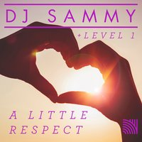 A Little Respect — DJ Sammy, Level 1