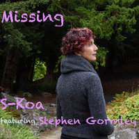 Missing — S-Koa, Stephen Gormley