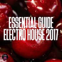 Essential Guide Electro House 2017 — сборник