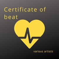 Certificate of Beat — сборник
