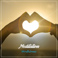 12 Meditation and Mindfulness Compilation — Zen Music Garden, Meditation, Relaxing Mindfulness Meditation Relaxation Maestro