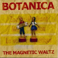 The Magnetic Waltz — Botanica