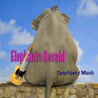 Sanctuary Much — Elephant's Gerald