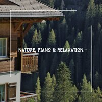 Nature, Piano & Relaxation. — Acoustic Piano Club