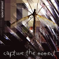 Capture the Moment — Spektralized