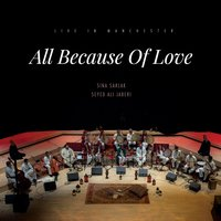 All Because of Love — Sina Sarlak, Seyed Ali Jaberi, Seyed Ali Jaberi, Sina Sarlak