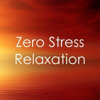 0 Stress Relaxation: 40 Rain Tracks — Spa Music Collective, Spa Music Paradise, Sounds of Rain & Thunder Storms, Sounds of Rain & Thunder Storms, Spa Music Collective, Spa Music Paradise