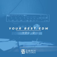 Your Best EDM, Vol. 2 — сборник