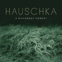 A Different Forest — Hauschka