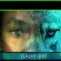 Flash Flood — Surreal