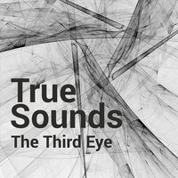 The Third Eye — True Sounds